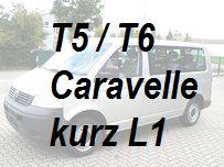 VW T5 T6 Caravelle kurz L1